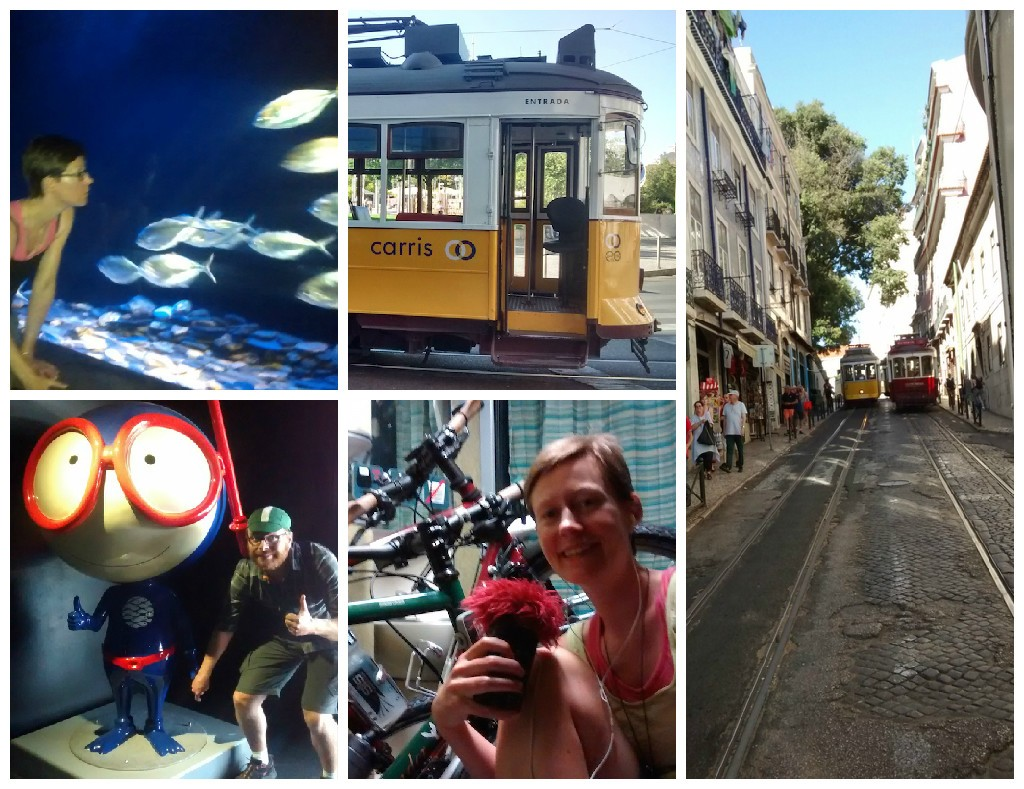 Clockwise from bottom left: Baden with mascot of the Lisbon Oceanarium. Shell and some fish. Tram No. 28. View from the tram. Podcasting on the sleeper train to Madrid.