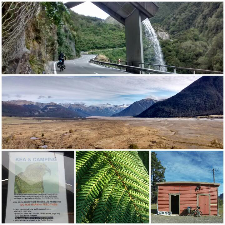 From top: up towards the viaduct on Arthur's Pass; Waimakariri Valley; watch out for the cheeky Kea; New Zealand fern; Cass railway station